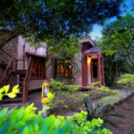 PENCH JUNGLE CAMP-PENCH